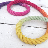 Ombre Dog Leash-Rainbow - Wild Clementine Co.