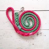 Ombre Dog Leash-Christmas Colors