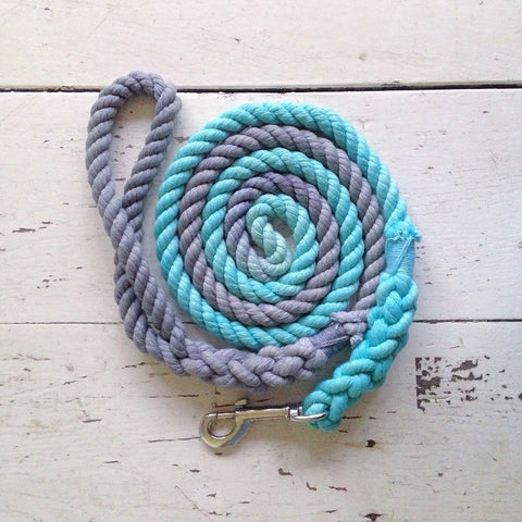 Ombre Dog Leash-Grey and Aqua