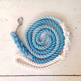 Ombre Dog Leash - Pacific Blue