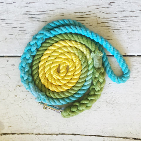 Ombre Dog Leash-The Dog Park