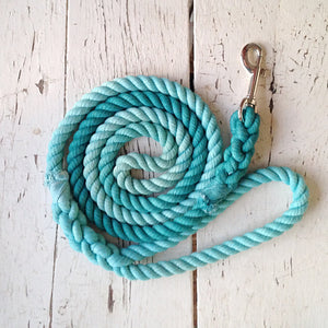 Ombre Dog Leash-Aqua and Teal