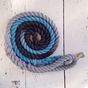 Ombre Dog Leash-Winter Skies