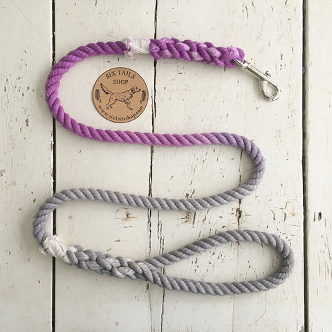 Ombre Dog Leash- Purple and Grey