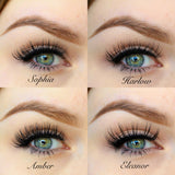 Lash bundle, all 4 by Silah faux mink lashes - get one free!