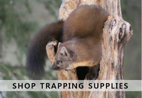 Trapping Supplies