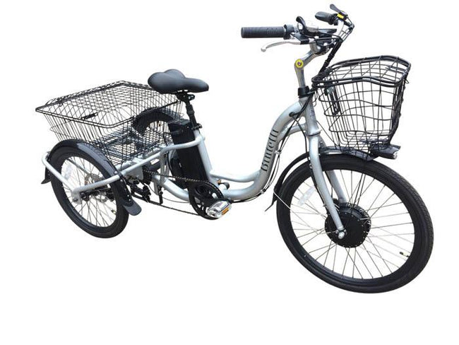 Bintelli Trio Electric Tricycle-Adult Trikes-Bintelli-Silver-Voltaire Cycles of Verona