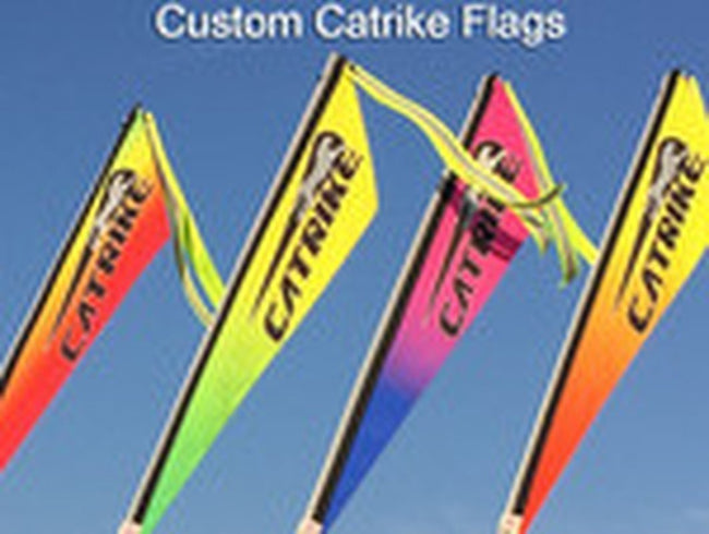 Catrike Logo Flag-Bicycle Flags-TerraCycle-Blue/Pink-Voltaire Cycles of Verona
