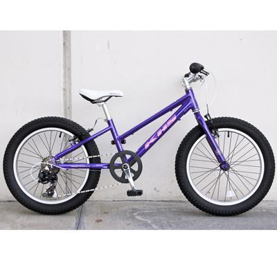 KHS Raptor Plus Girls Bicycle (Purple)-Basic Bicycles-KHS-Voltaire Cycles of Verona