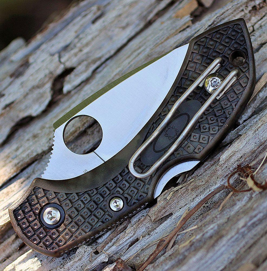 Spyderco Dragonfly 2 Zome Plain Green (C28ZFPGR2)-Knives-Spyderco-Voltaire Cycles of Verona