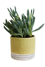 Load image into Gallery viewer, Small Herringbone Round Planter