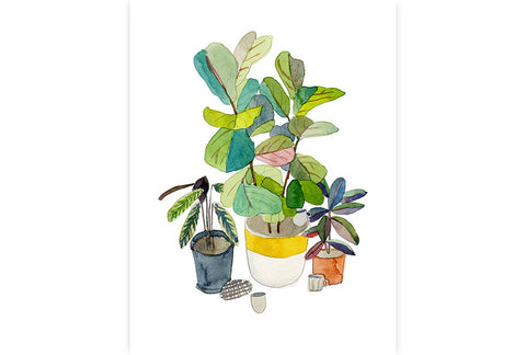 Tea In My Potted Garden (A4) by Elizabeth Barnett