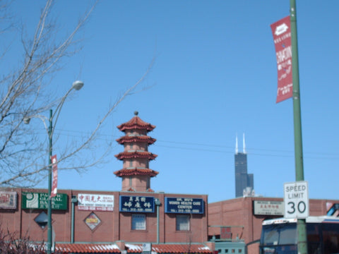Chicago's Chinatown is a fantastic place to sample dim sum. www.explorelocaluniverse.com
