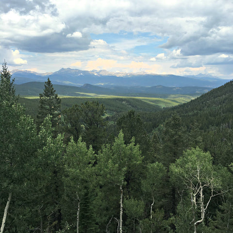 A view from near Panorama Point during one of Local Universe's Colorado hikes. Shop Colorado-made goods and get visitor tips at www.explorelocaluniverse.com.