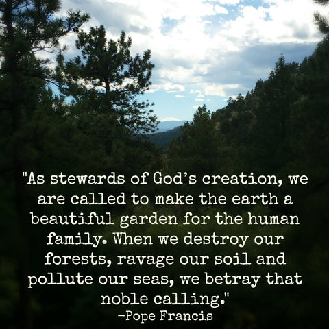 Environment quote from Pope Francis