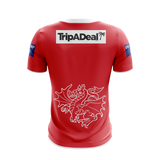 XBlades - Mens St George Illawarra Dragons Training Tee 20 - Red