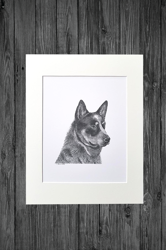 Cathy Hamilton Artworks - Print - Blue Heeler