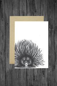 Cathy Hamilton Artworks - Echidna Card