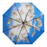 HappySweeds Umbrellas - Cash Flow