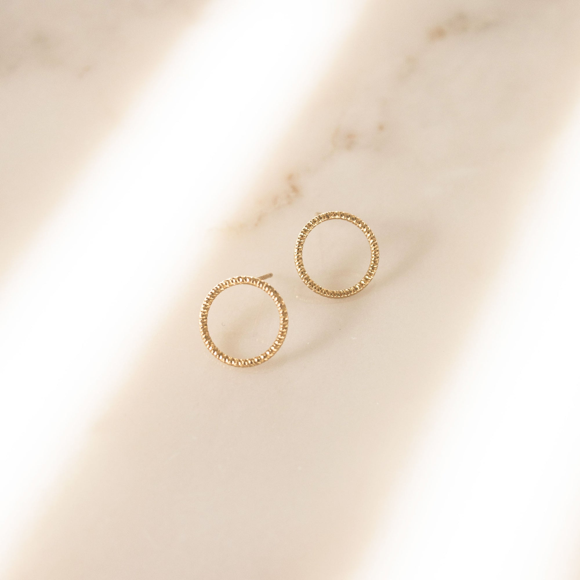 The Circle Small Earrings