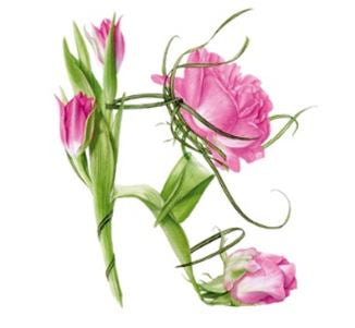 """Tulip & rose shoe"" by Billy Showell - Blank Eco Friendly Greeting Card (each)"