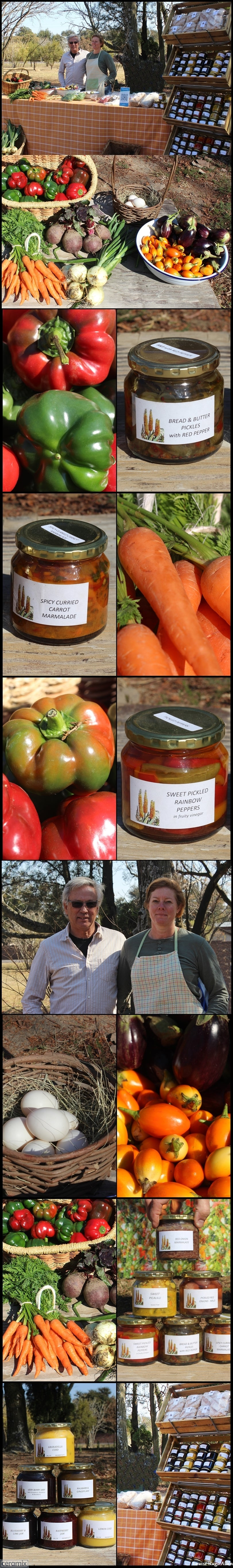 Aloe Dale Farm produces organic fruit, vegetables, artisanal style preserves, pickles, jams, cheeses and breads