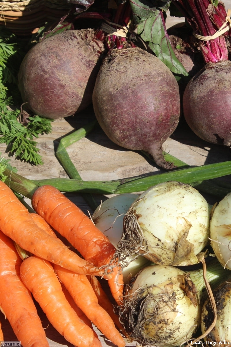 Beetroot, carrots & onions from Aloe Dale organic Farm
