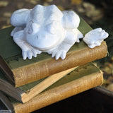 Medium Ceramic White Frog in Terracotta Clay Glazed White by Ceramix