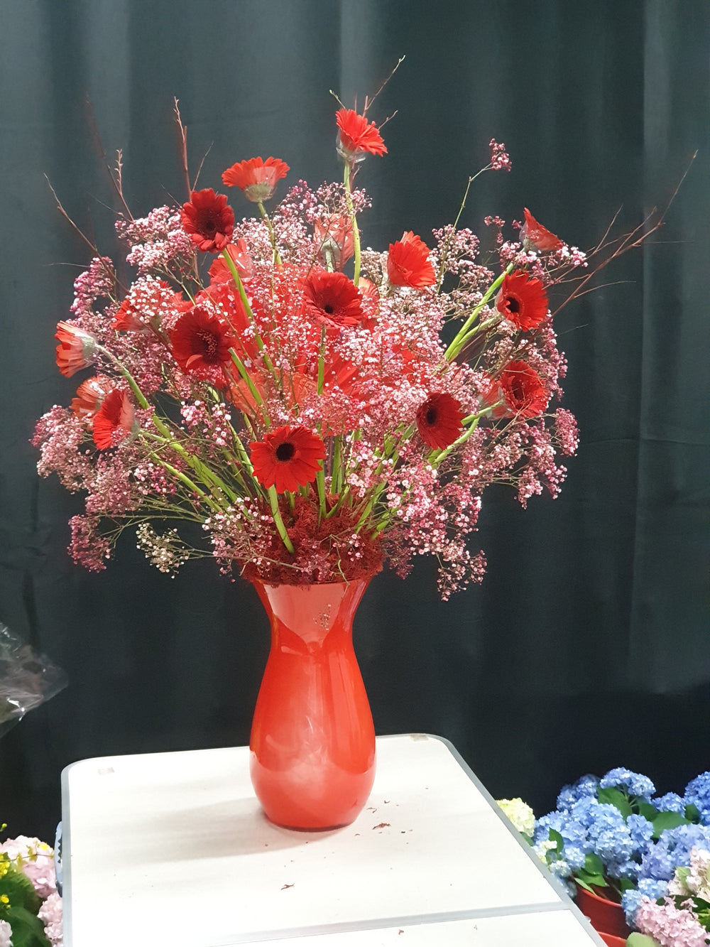 fresh gerberas in red vase