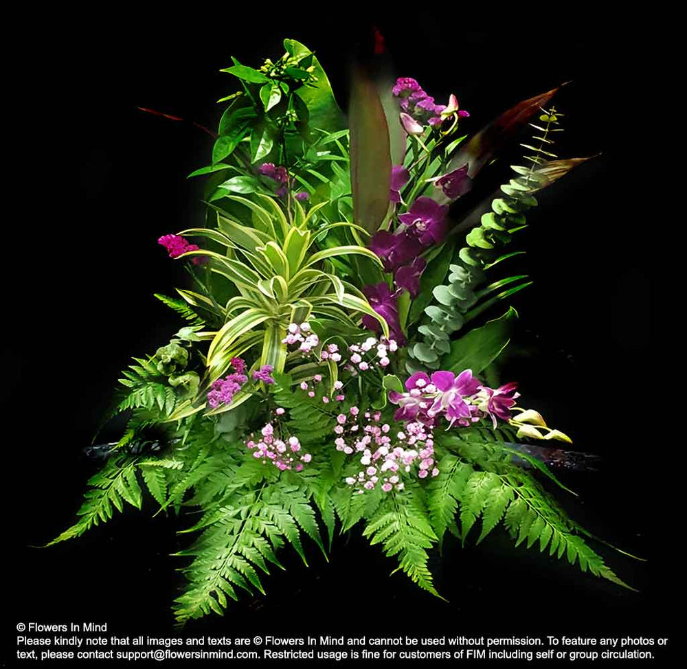 stage decoration flowers with orchids and ferns