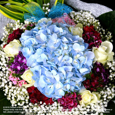 Bouquet of Hydrangea and Roses (HB233) - Flowers-In-Mind