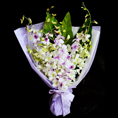 Bouquet of Orchids (HB30) - FLOWERS IN MIND