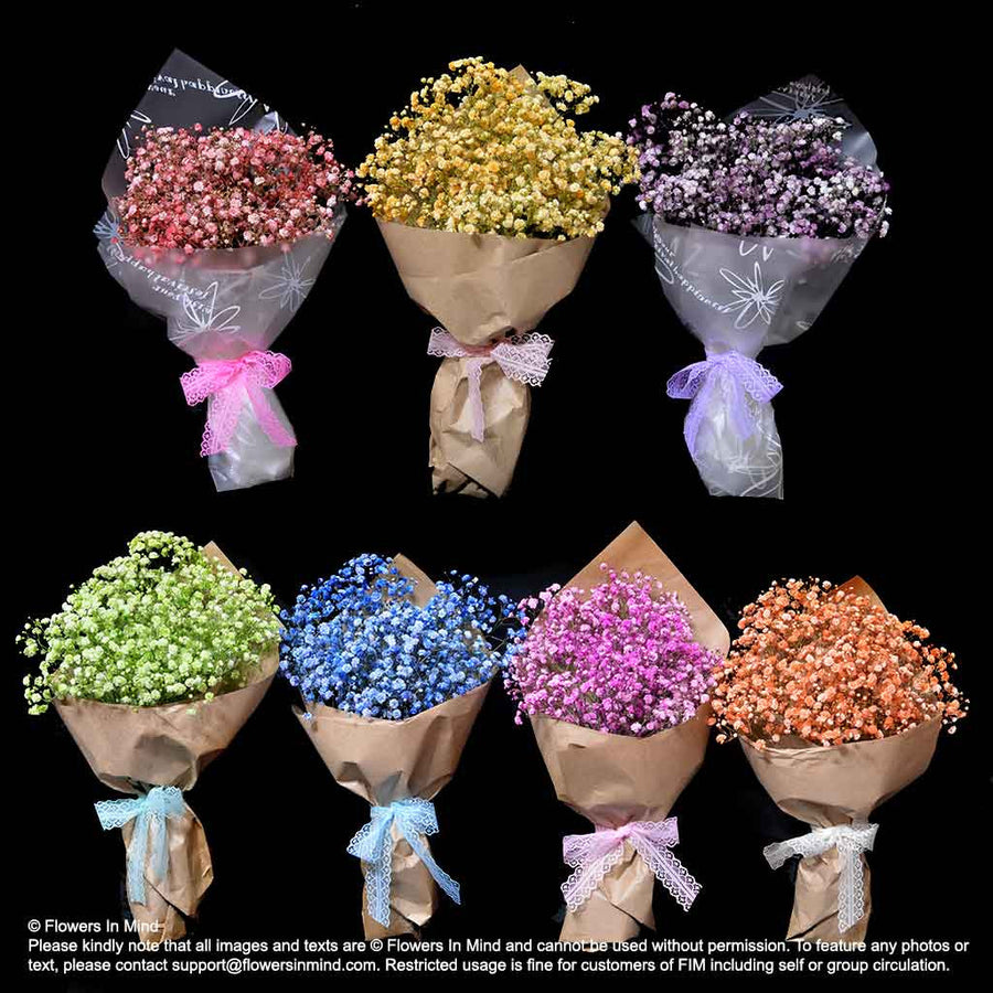 7 X Bouquets of Gypsophilla (HB355) - Flowers-In-Mind