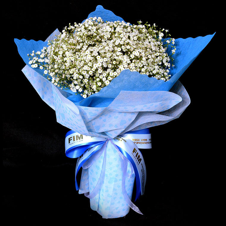 Bouquet of Gypsophila (HB56) - Flowers-In-Mind