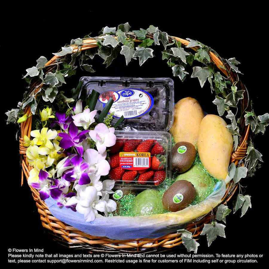 Get Well Hamper (HP109)