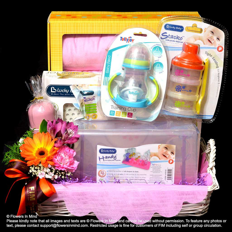 NEW BORN HAMPER (HP125)
