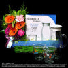 Hari Raya Gifts and Hampers (HR01) - Flowers-In-Mind