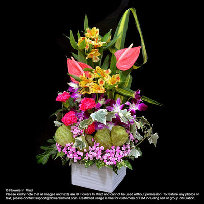 Contract Flowers (12 months or 52 weeks subscription) - Flowers-In-Mind