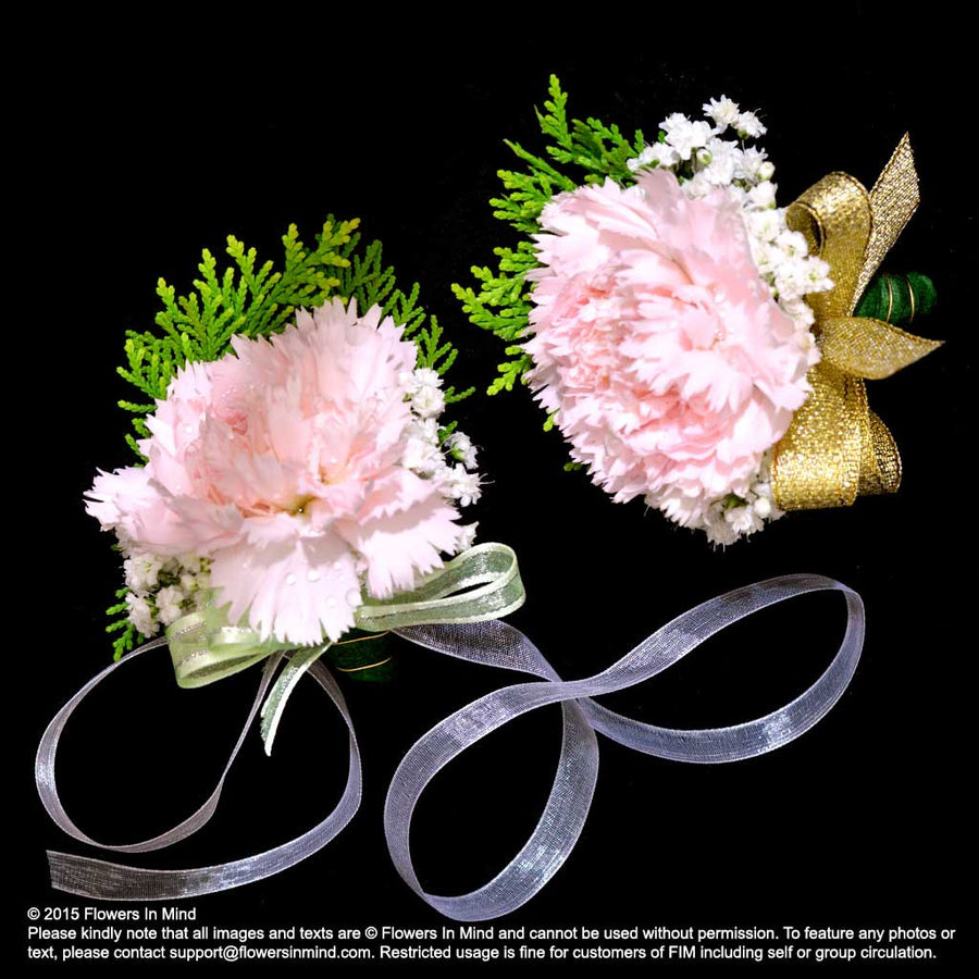 Carnation Corsage and Wedding Wristlet (WD138)