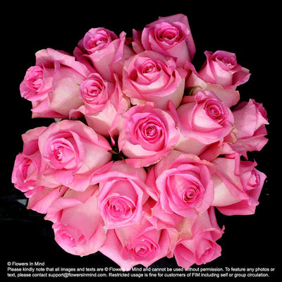 Pink Roses Bridal bouquet in natural stem (WD162) - Flowers-In-Mind