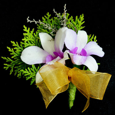 Corsage with Orchids - Flowers In Mind