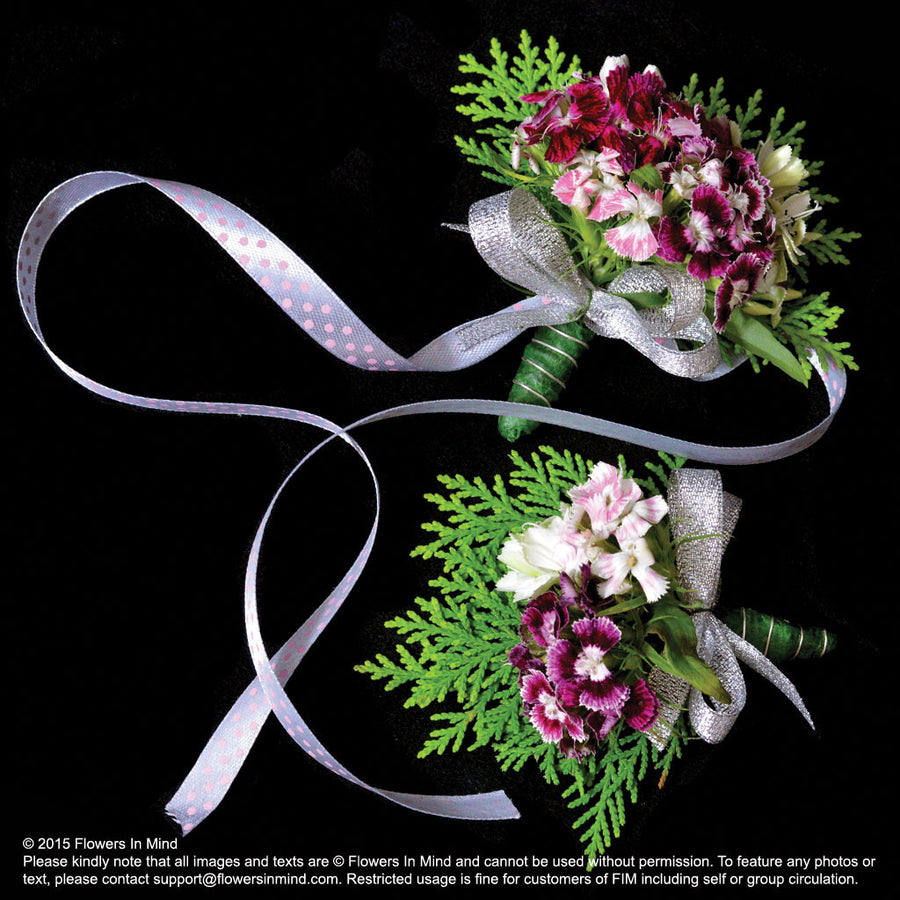 Corsage and Wedding Wristlet with Sweet Williams (WD47)