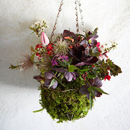 Wirework basket lined <br>with moss and filled <br>with spring flowers