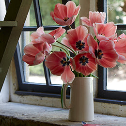 Full blown tulips <br>fading in <br>the workshop