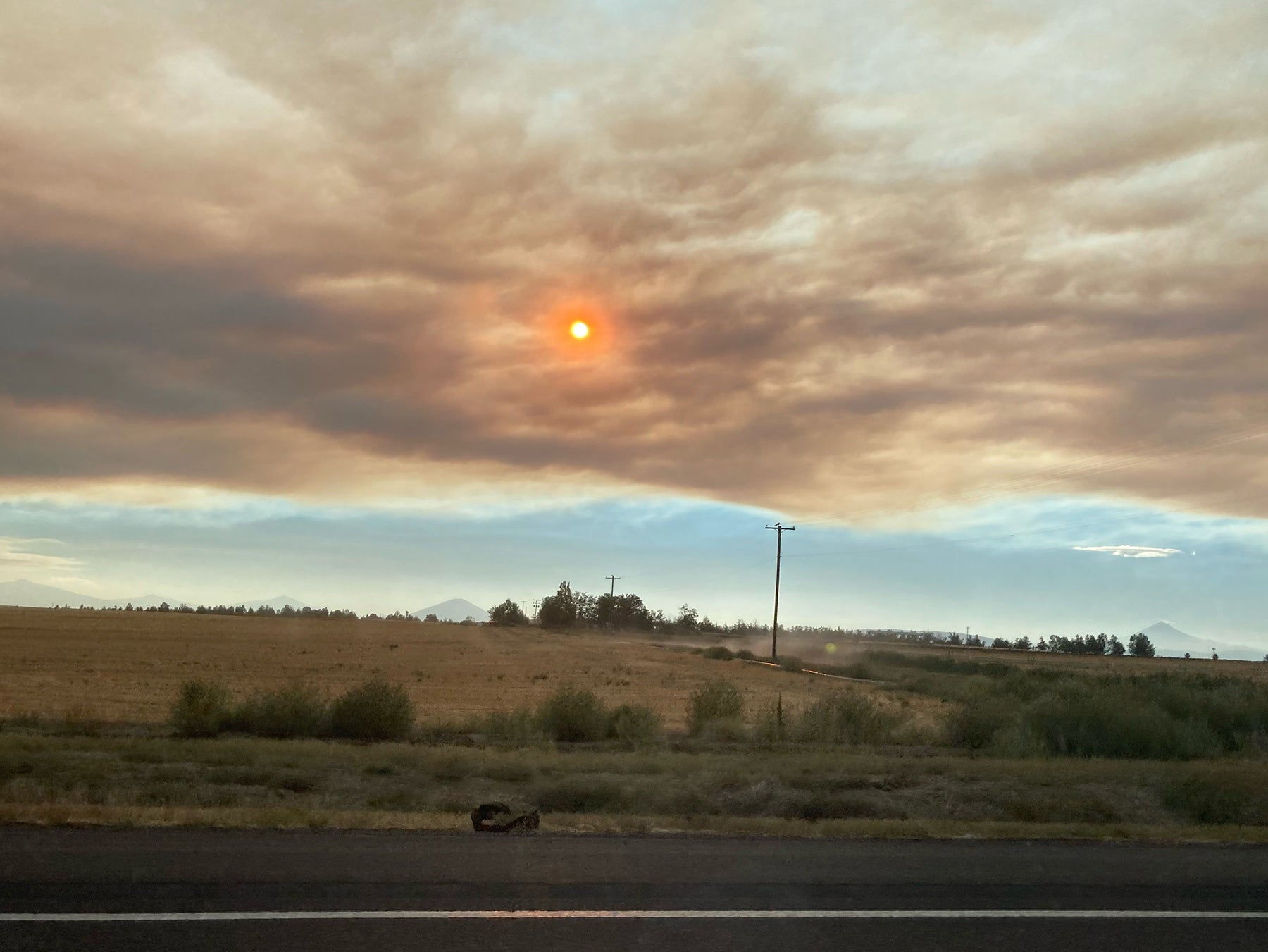 Forest Fires near Lake Tahoe