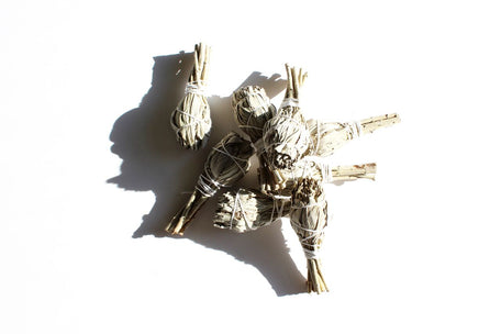 Single Sage Bundle