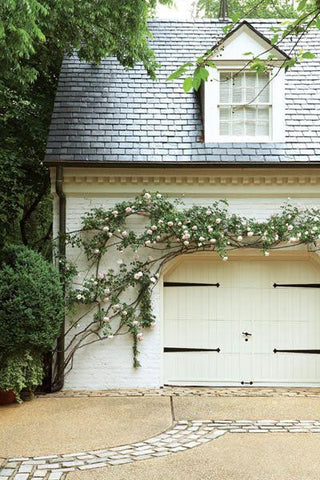 7 Spring Renovation Ideas for Your Home