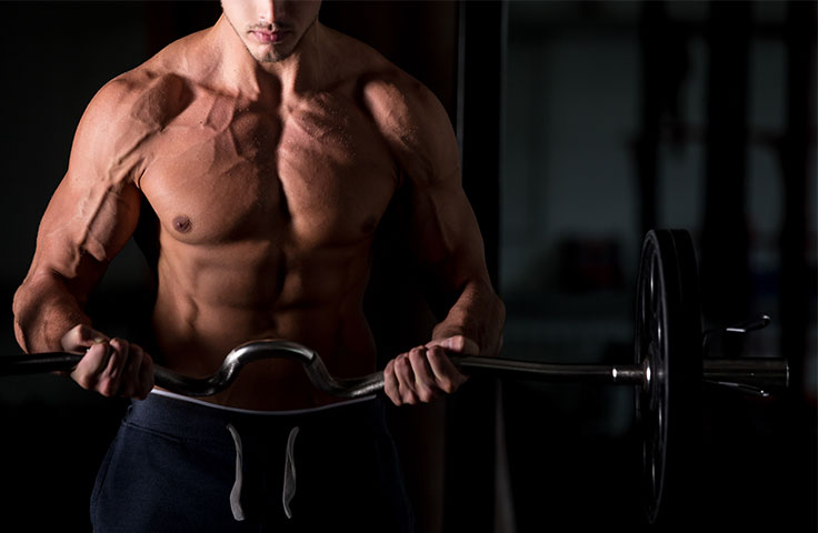 Should you train a muscle group more than once a week By Robor Fitness 1