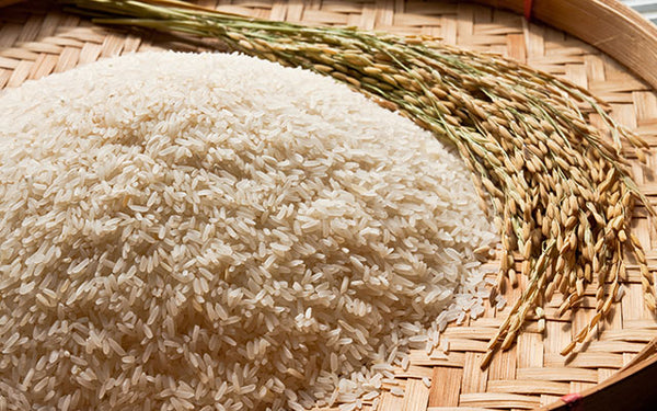 foods to eat when losing weight - rice