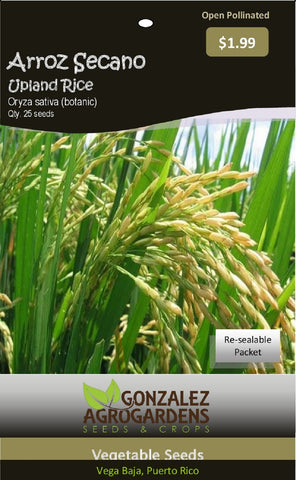 Arroz Secano Upland Rice Oryza sativa 25 Seeds packet